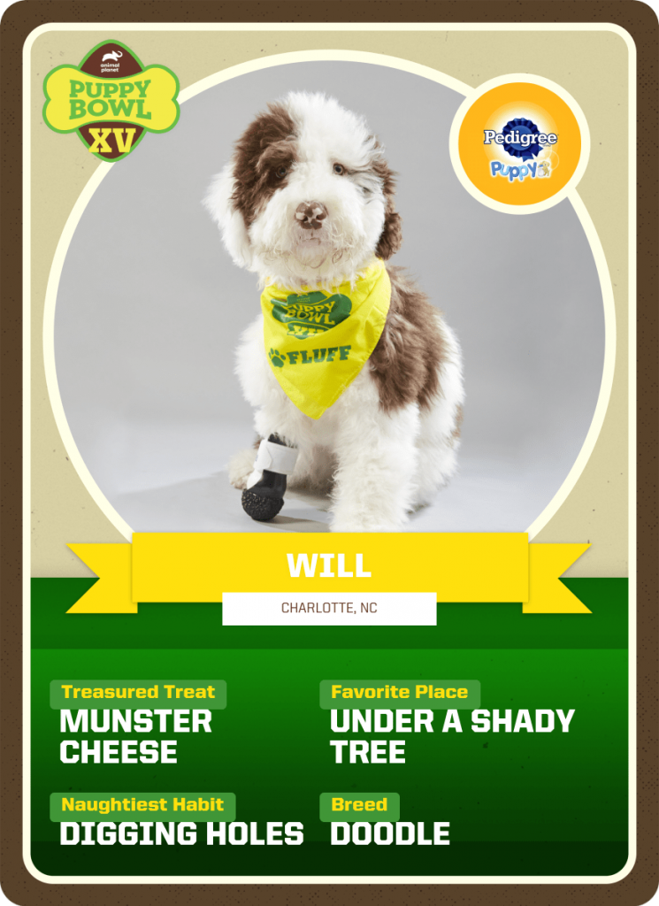 Will Puppy Bowl Trading Card